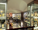 Hunterian Museum, Royal College of Surgeons, London